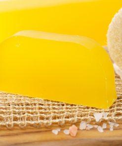lemon.palashampoo